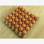 山东蛋托设备,蛋托机,人性化设计蛋托模具,鸡蛋托盘,龙口山河(祥龙)公司塑机