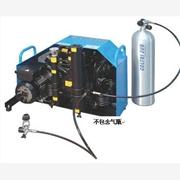 供应意大利科尔奇MCH16/ETSTDMCH16空气压缩机