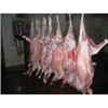 供应苏州供应新西兰冻整羊 全羊 羊蛋 羊腰冻整羊
