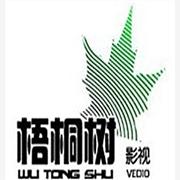 提供服务上海影视广告片制作公司|影视公司