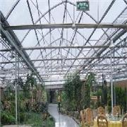 连栋育苗温室建设||山东连栋大棚建设||鲁中