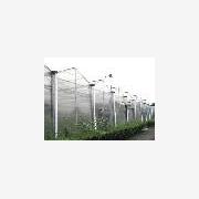 全国最好的中空板温室建造商/寿光中空板温室/寿光华诚农业