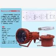 供应信息DGC175\127矿用防爆投光