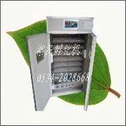 煤电两用土鸡孔雀鹧鸪孵化机卵化机