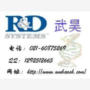 总磷快速测定试剂盒 产品汇 特价供应96T,E90090Mu,小鼠 MCSF ELISA 试剂盒