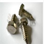 不锈钢螺丝、不锈钢螺丝龙华批发、不锈钢螺丝龙华供应、不锈钢螺