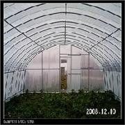 云南庭院温室|温室设计|昆明育苗温室