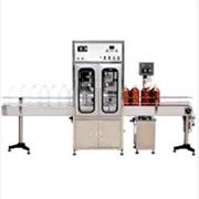 供应ZSDG系列全自动液体定量灌装机