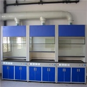 广西南宁实验室设备全木通风柜生产定制
