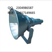 供应NTC9200  NTC9200 防震型投光灯