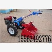 独家销售4U-600A手扶拖拉机带土豆收获机