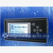 供应ZYW205-BJ智能无纸记录仪