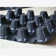 华龙化纤批发排水板/塑料排水板/复合排水板