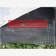 供应北京屋顶绿化排水板
