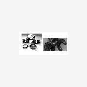 供应德国AWS轮轴承组件、管件及阀门